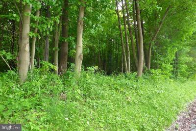 Swanton Residential Lots & Land For Sale: Rt 135
