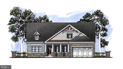 Bel Air Single Family Home For Sale: 205 Glenwood Road