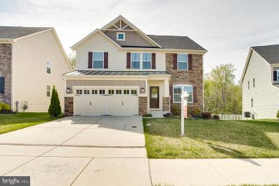 Single Family Home For Sale: 729 Shady Creek Court