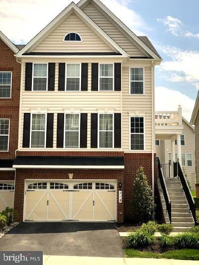 Abingdon Townhouse For Sale: 319 Spruce Pine Road