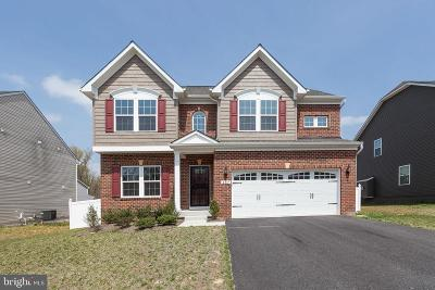 Joppa Single Family Home For Sale: 437 Rogers Ford Lane