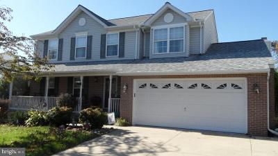 Abingdon Single Family Home For Sale: 2853 Bynum Overlook Drive