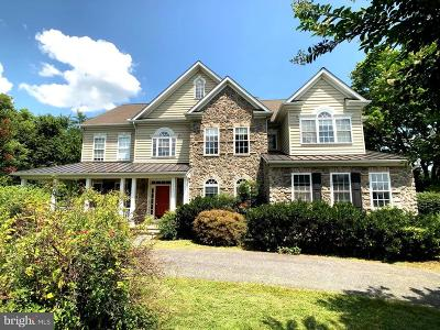 Woodbine Single Family Home For Sale: 15094 Bushy Park Road