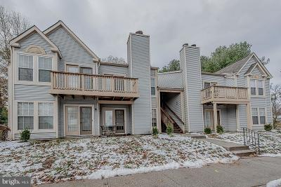 Howard County Condo For Sale: 4704 Dorsey Hall Drive #2-201