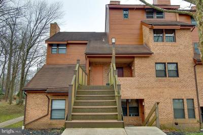 Howard County Condo For Sale: 7585 Weather Worn Way #E
