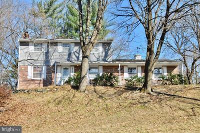 Ellicott City Single Family Home For Sale: 8602 Chapel View Road