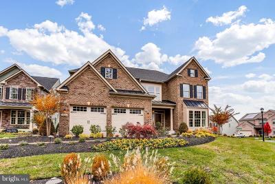 Ellicott City Single Family Home For Sale: 9802 Soapstone Trail