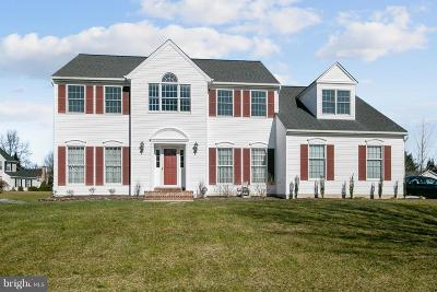 Ellicott City Single Family Home For Sale: 3801 Peace Pipe Court