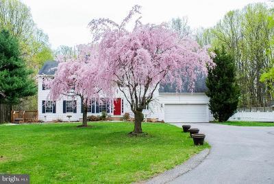 Ellicott City Single Family Home For Sale: 11791 Triadelphia Road
