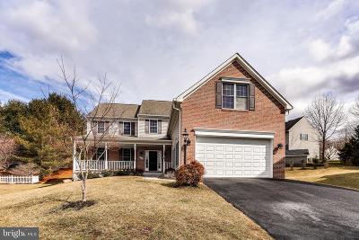 Ellicott City Single Family Home For Sale: 9808 Caitlins Court