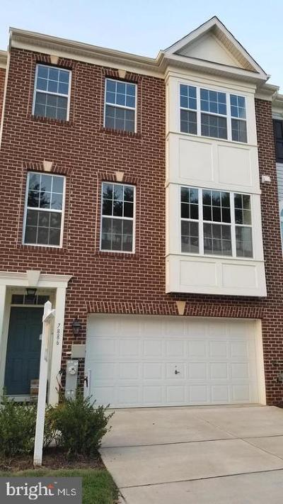Howard County Townhouse For Sale: 7886 River Rock Way