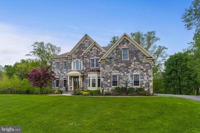 Ellicott City Single Family Home For Sale: 11049 Hunters View Road