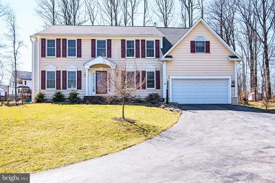 Ellicott City Single Family Home For Sale: 3017 Cluster Pines Court
