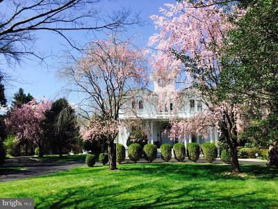 Ellicott City Single Family Home For Sale: 4300 Temora Manor Lane