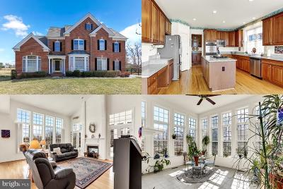 Glenelg Single Family Home For Sale: 3524 Snow Chief Road