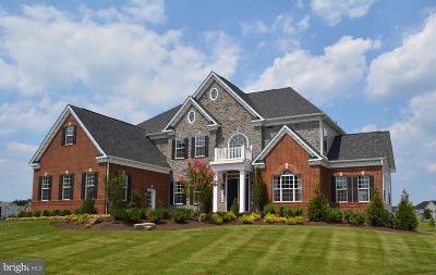 Clarksville, Columbia, Ellicott City, Laurel Single Family Home For Sale: 5636 Dosa Court