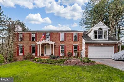 Ellicott City Single Family Home For Sale: 9305 Furrow Avenue