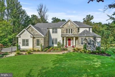 Ellicott City Single Family Home For Sale: 11263 Independence Way