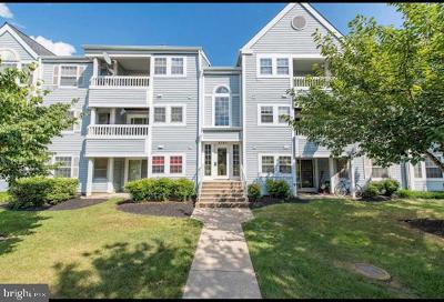 Ellicott City Condo For Sale: 8397 Montgomery Run Road #I