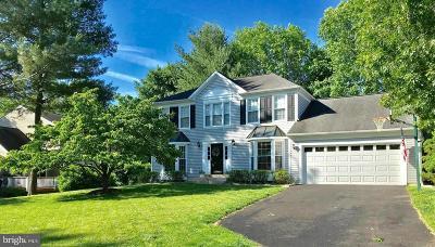Ellicott City Single Family Home For Sale: 9707 Bridgewater Court