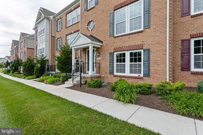 Howard County Townhouse For Sale: 8864 Purple Iris Lane #11