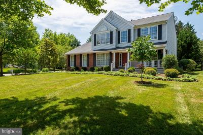 Ellicott City Single Family Home For Sale: 10276 Breconshire Road