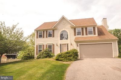 Ellicott City Single Family Home For Sale: 8233 Glenmar Road