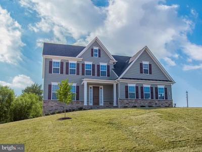 Howard County Single Family Home For Sale: 13715 Tergeo Drive