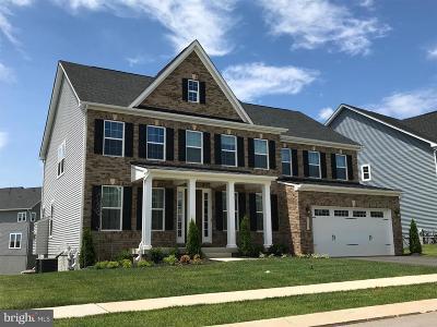 Clarksville, Columbia, Ellicott City, Laurel Single Family Home For Sale: 3066 Bethany Lane