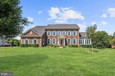 Ellicott City Single Family Home For Sale: 3121 Argent Path