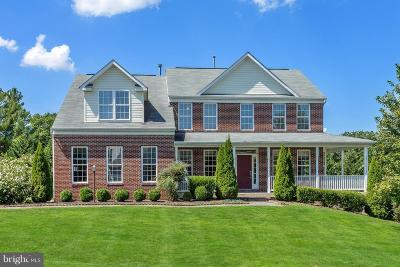 Ellicott City Single Family Home For Sale: 5110 Spring Oaks Lane