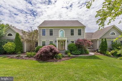 Woodbine Single Family Home For Sale: 748 Chessie Crossing Way