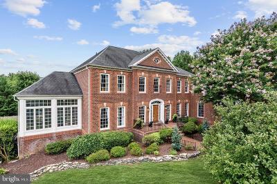 Ellicott City Single Family Home For Sale: 11187 Frederick Road