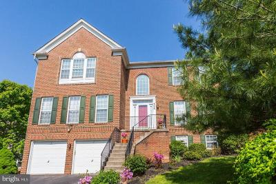 Ellicott City Single Family Home For Sale: 4508 Red Leaf Court