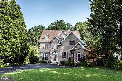 Ellicott City Single Family Home For Sale: 11789 Triadelphia Road