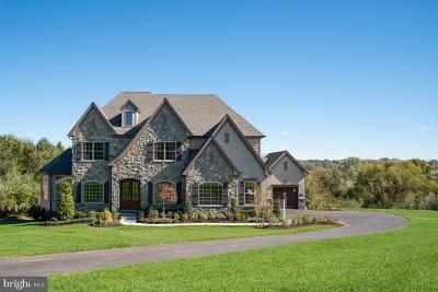 Woodstock Single Family Home For Sale: Davis Branch Road