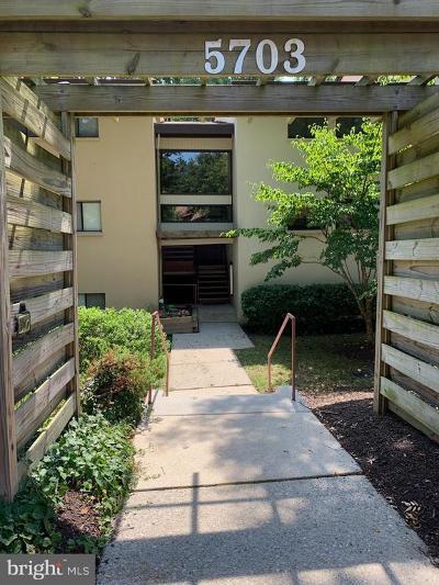 Columbia Condo Active Under Contract: 5703 Harpers Farm Road #D