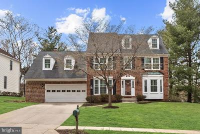 Ellicott City Single Family Home For Sale: 10200 New Forest Court