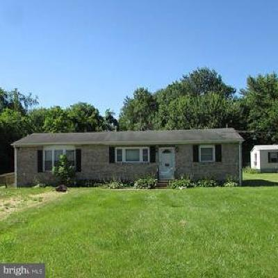 Worton Single Family Home For Sale: 24871 Lambs Meadow Road