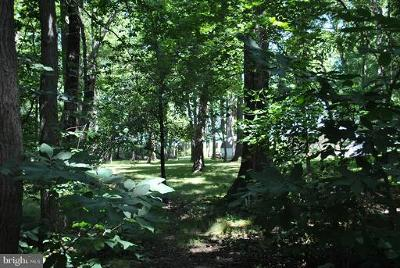 Chestertown Residential Lots & Land For Sale: 21322 Tennessee Avenue