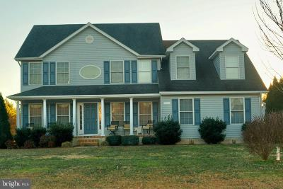 Kent County Single Family Home For Sale: 31921 Griffith Drive