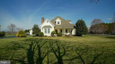 Kent County Single Family Home For Sale: 12026 Parson Hill Court
