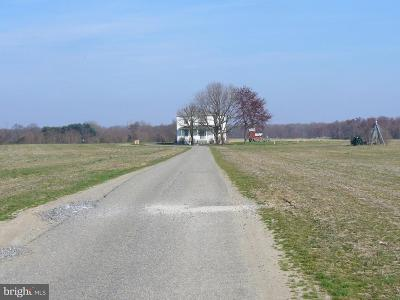 Kent County Farm For Sale: 12451 Massey Road