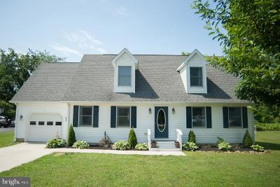 Chester Single Family Home For Sale: 205 Devon Drive