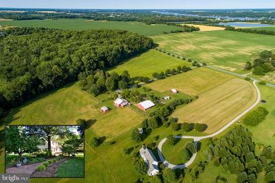 Cecil County, Dorchester County, Kent County, Queen Annes County, Somerset County, Talbot County Farm For Sale: 8062 Airy Hill Road