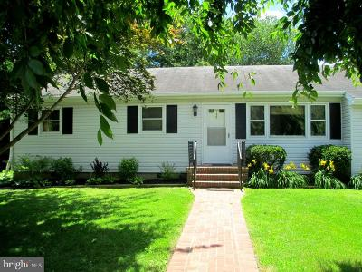 Chester Single Family Home For Sale: 115 School Road