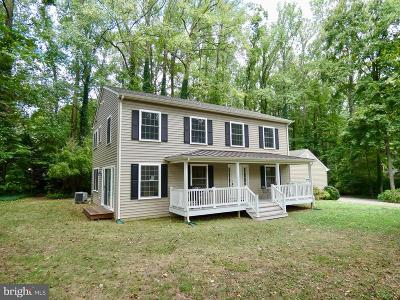 Kent County Single Family Home For Sale: 8500 Broad Neck Road