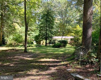 Kent County Single Family Home For Sale: 21640 Pine Lane