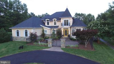 Gaithersburg Single Family Home For Sale: 24313 Clematis
