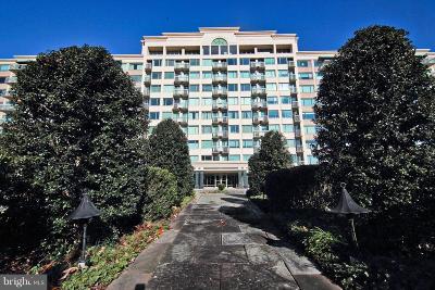 Bethesda Condo For Sale: 5450 Whitley Park Terrace #805